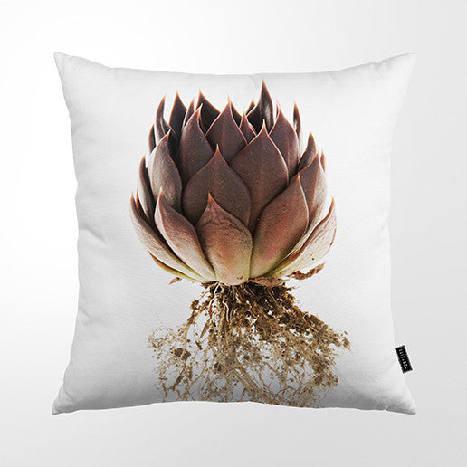 Cushion Cover - St Verde