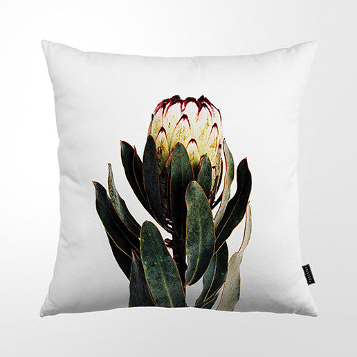 Cushion Cover - Classic Botanical Flower
