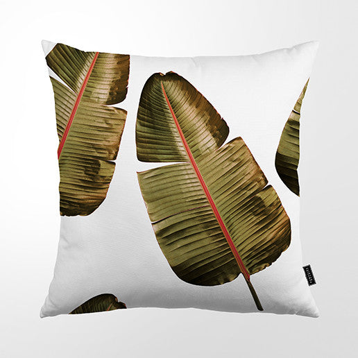 Cushion Cover - Wild Strelitzia (pink vein)