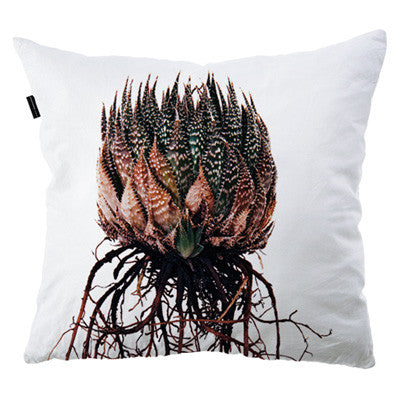 Cushion Cover - Aloe aristata