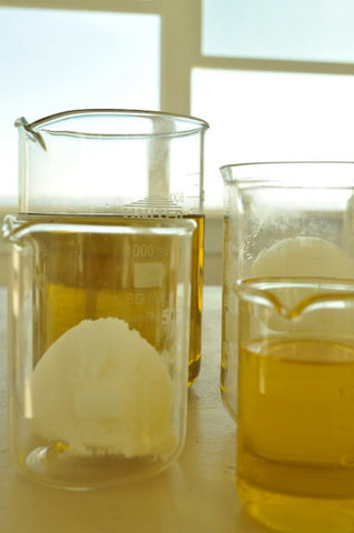 Organic Shea butter in liquid form in two beakers with a scoop of butter in one beaker