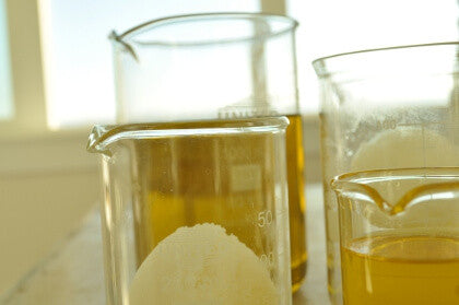 Shea butter in liquid form in 2 glass beakers and in solid form in one beaker