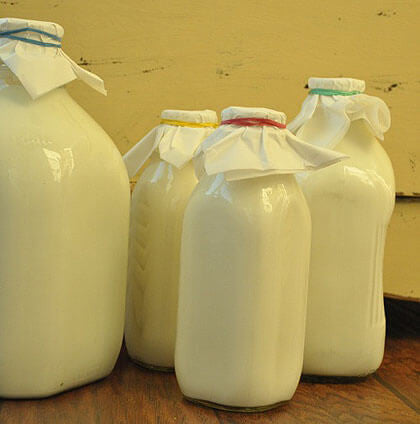four-different-size-old-fashioned-glass-milk-jugs-Full-of-Goats-Milk