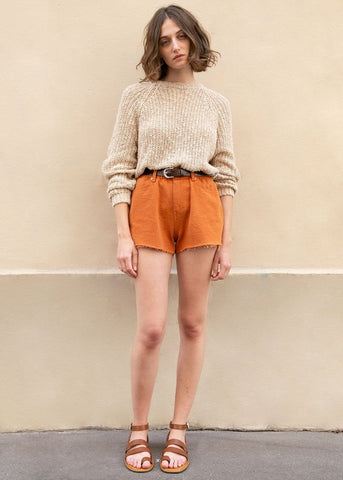 Frayed Denim Shorts in Orange Clay Shorts Are You