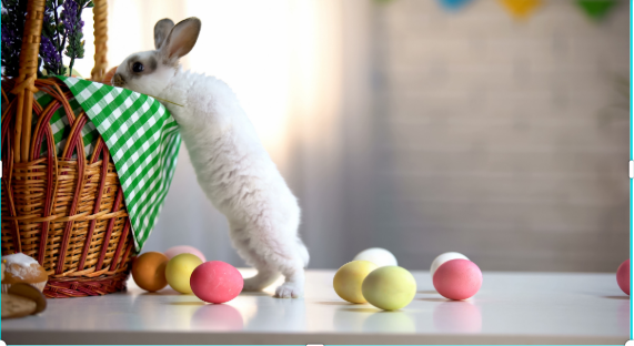 Easter Basket Ideas from Small Businesses Delivered Right to Your Door!