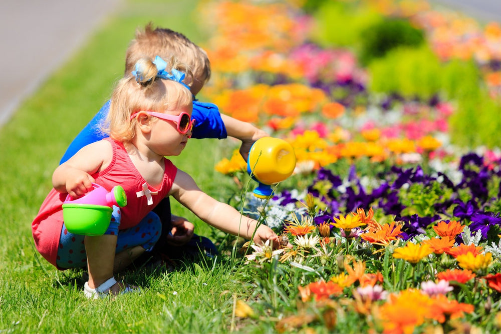 Top 9 Summer Activities You Can Plan With Your Toddler