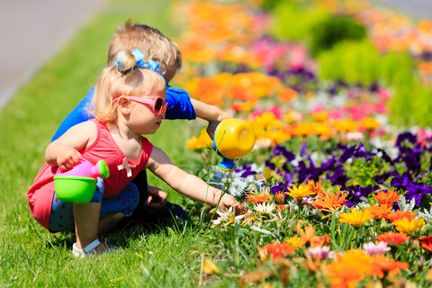 little boy and toddler girl watering flowers in summer