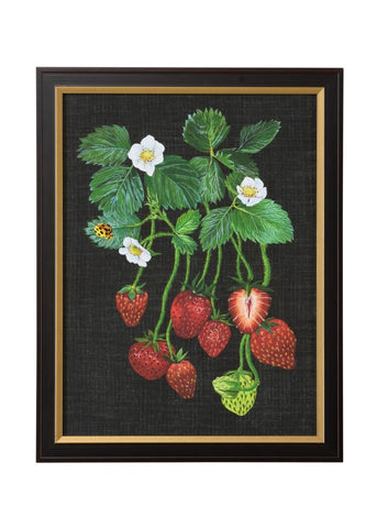 Strawberry Study Ii