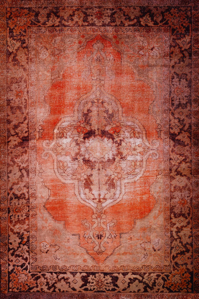 Amanti Ginger Area Rug
