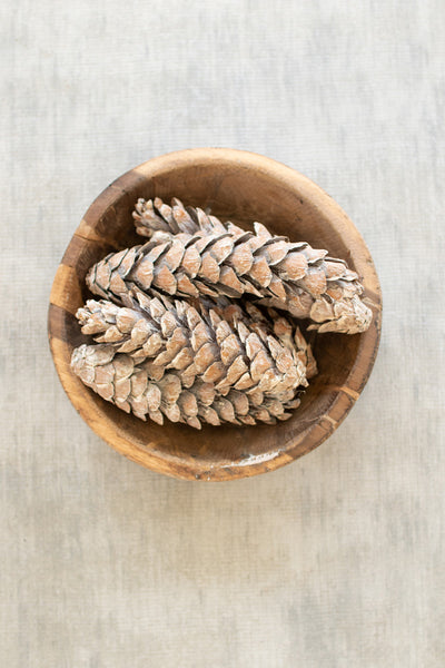 Bag Of 6 Strobus Pine Cones  -  Frosted White