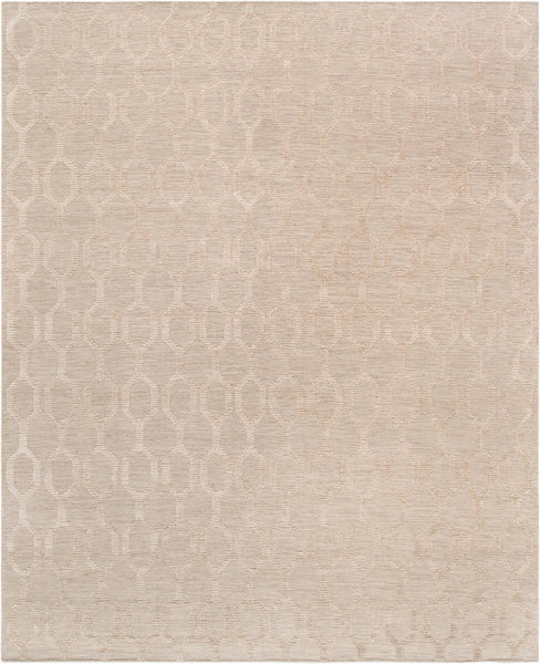 Transitional Design Hand-Knotted Area Rug