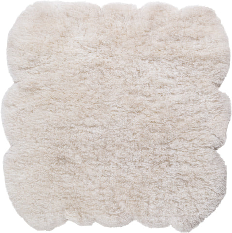 Sheep Rugs