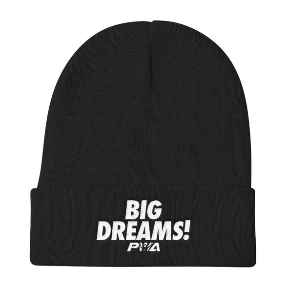 Big Dreams Knit Beanie - Power Words Apparel