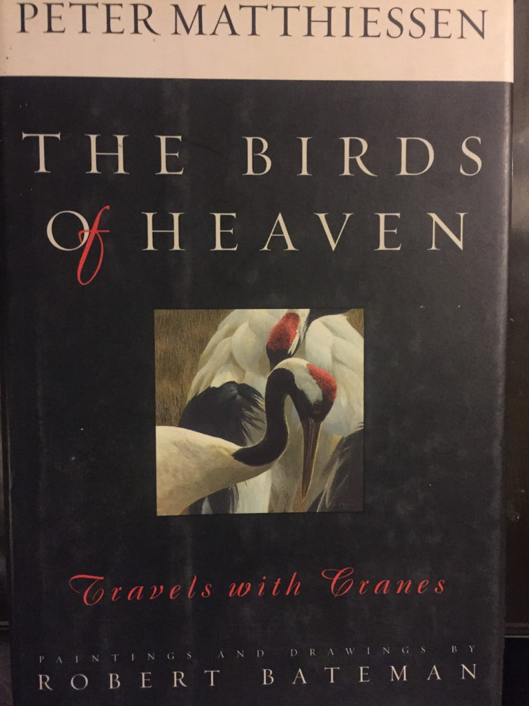 The Birds of Heaven (And other favorite bird stories)