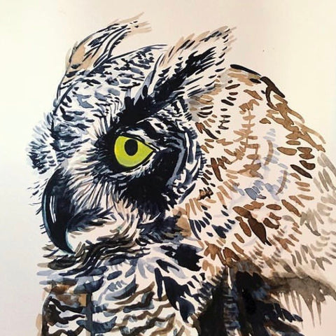 Watercolor Owl print