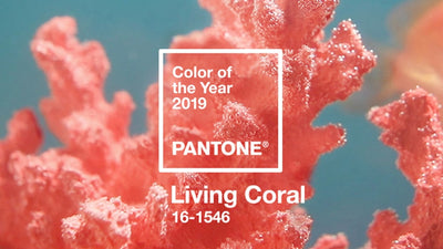 Trend 2019: Living Coral - Pantone Farbe 2019