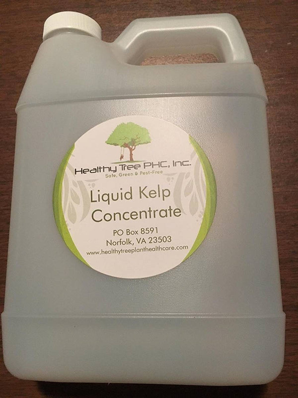 Healthy Tree Liquid Kelp Concentrate 32 oz Jug