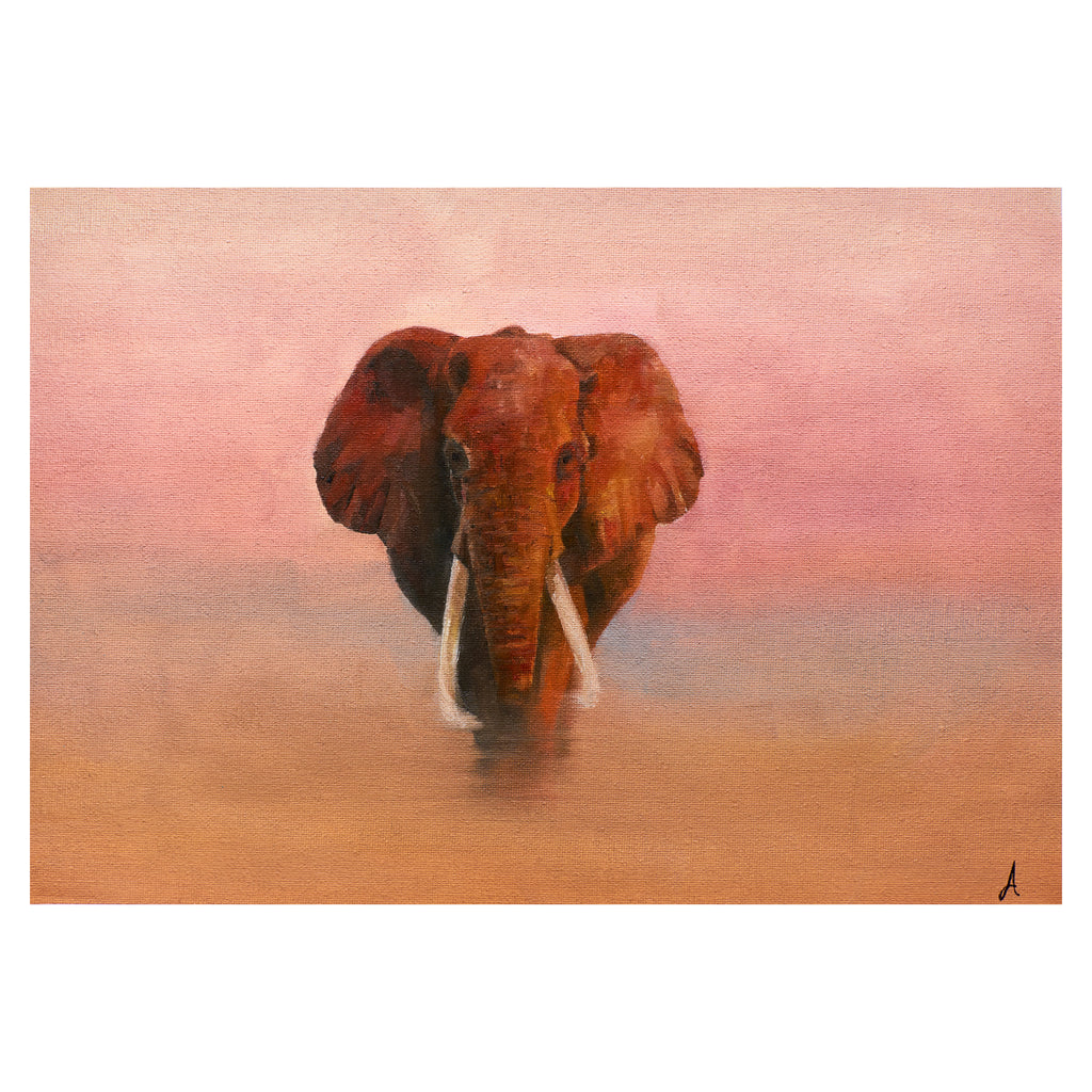 Desert Elephant - Limited Edition Print