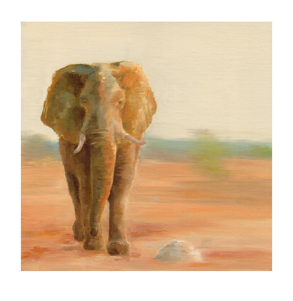 Sunset Elephant - Limited Edition Print