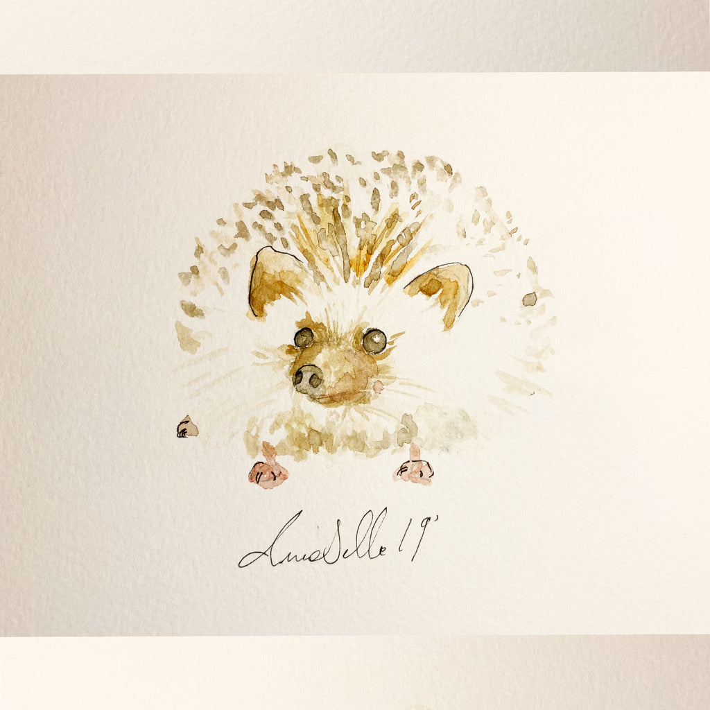 Hedgehog - An Original Watercolour Painting