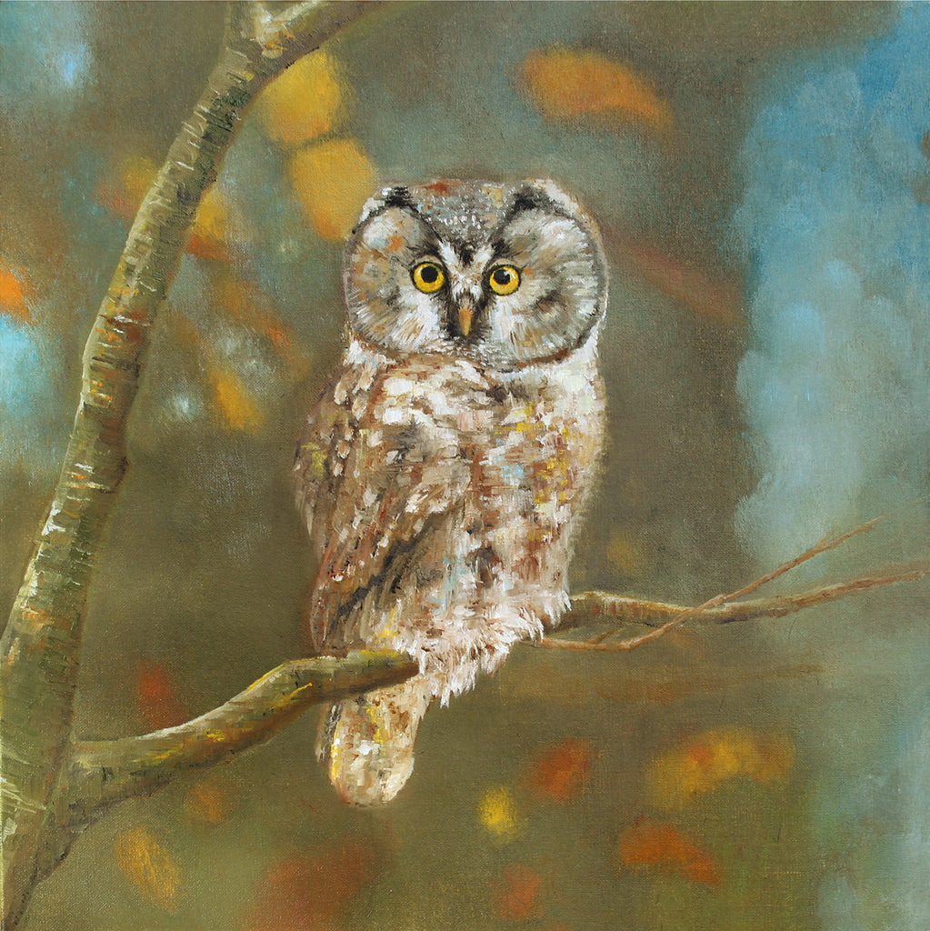Owl - Limited Edition Print