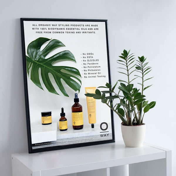 Oway Non-Toxic Hair Styling Products Poster