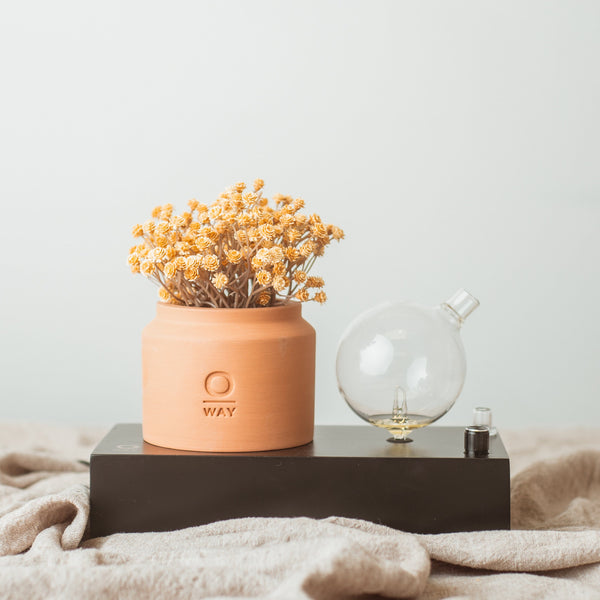 Oway SEGNO Nebulizing Essential Oil Diffuser