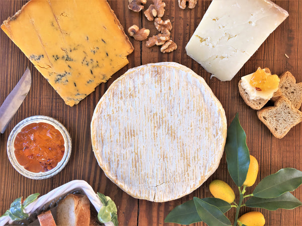 Three New Classics Cheese Collection