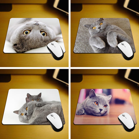 Narcando Beautiful Shorthair Cat Mouse Pad
