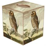 Tawny Owl Tissue Box Cover