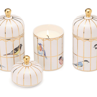 Gilded Cage Lemon Verbena Candle