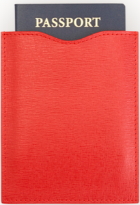 RFID Blocking Passport Sleeve
