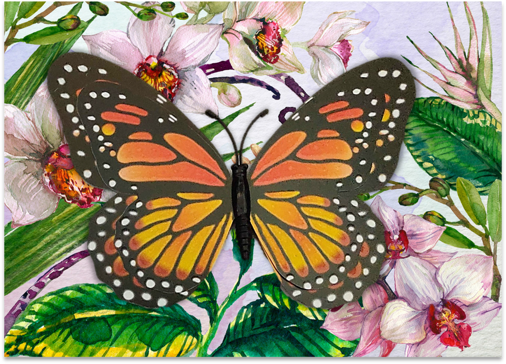 CRD-01 Monarch on Orchid Floral
