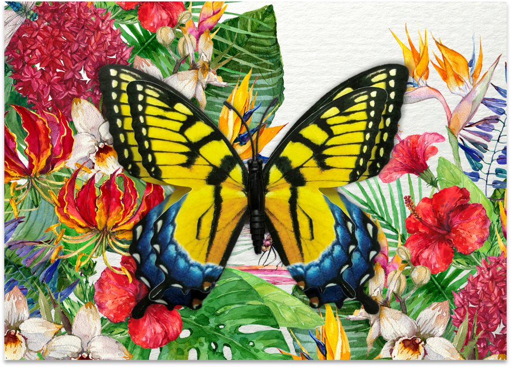 CRD-08 Yellow Swallowtail on Tropical Floral