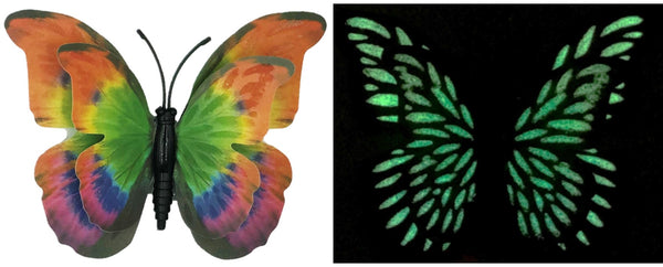 CLMG-130 Rainbow Morpho GLOW Butterfly