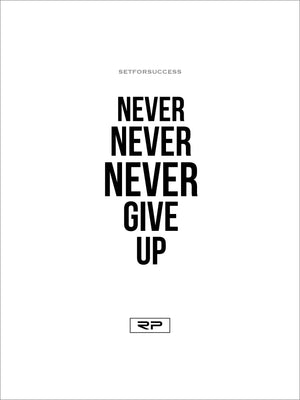 NEVER GIVE UP - 18x24 Poster