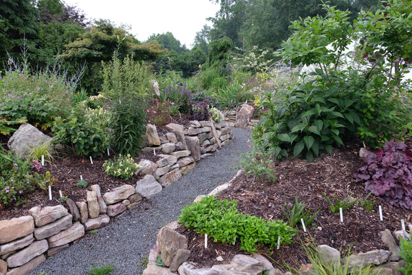 Visit Plant Delights Nursery in Raleigh, NC | Call Ahead. Check our Hours.  Arrange for a Tour