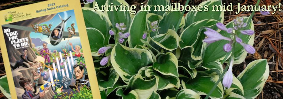 3rd Annual Southeastern Plant Symposium & Rare Plant Auction