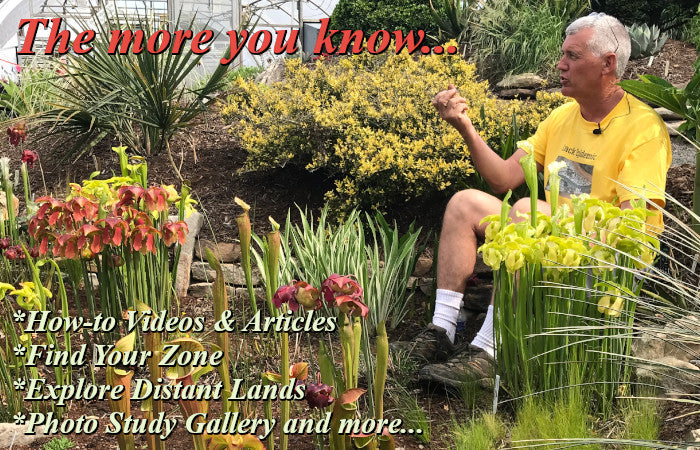 Image of Tony Avent giving a talk in a bog garden