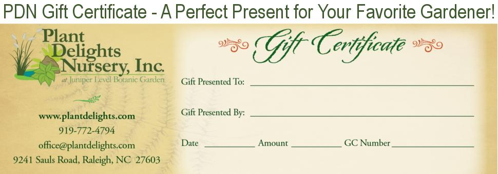 Image of a PDN gift certificate