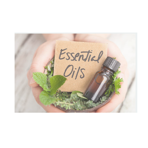 I Am Eucalyptus - Australian Essential Oil - 15ml