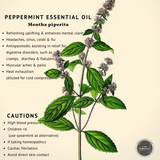 I Am Peppermint Essential Oil - 15ml
