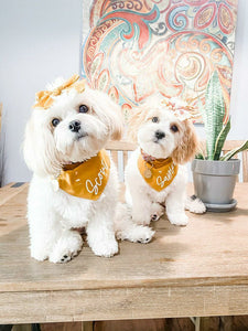 Autumn Floral Dog Bandana
