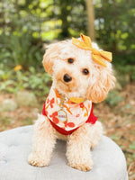 Load image into Gallery viewer, Autumn Floral Dog Bandana
