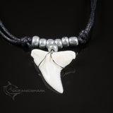 Real shark tooth necklace not fossil shark for sale  c7