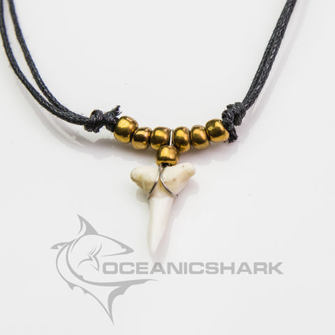 Shark tooth necklace Australian souvenir gold c118