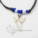 Genuine shark teeth necklace chelsea FC colour c124