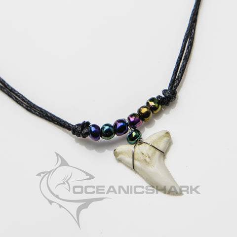 Blue shark teeth tooth necklace rainbow paua c6