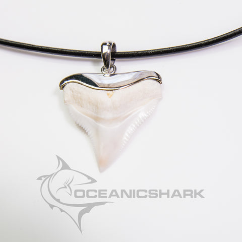 Bull Shark Tooth silver wrapped infused men's gift s10
