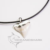 Bull shark tooth solid sterling cap silver men's gift s12